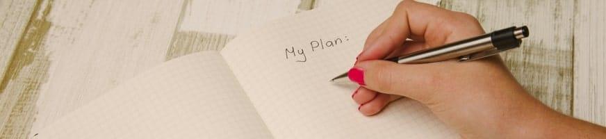 Developing the Plan